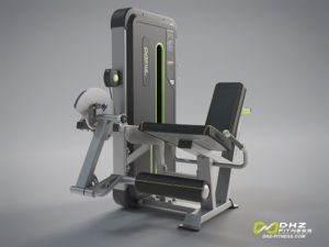 DHZ Fitness Mini Apple A3000 A3002 Разгибание ног фото