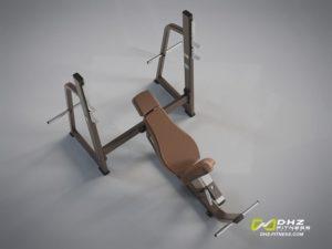 DHZ Style I Pro E1042 Скамья – стойка для жима под углом вверх фото