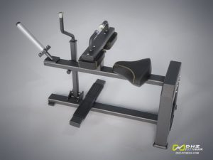 DHZ Style I Pro E1062 Икроножные сидя фото