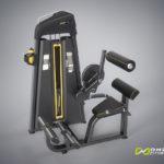 DHZ Fitness Evost E1000 E1031 Разгибание спины