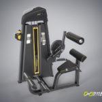 DHZ Fitness Evost E1000 E1074 Пресс машина / разгибание спины