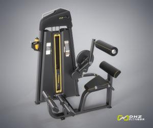 DHZ E1074 Пресс машина / разгибание спины