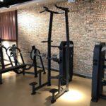 DHZ Fitness Fusion Pro E7009 Турник / брусья с противовесом