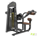 DHZ Fitness Evost E1000 E1088 Пресс машина / разгибание спины