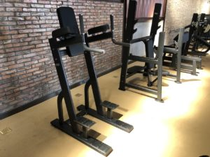 DHZ Fitness Prestige Pro E7047A Пресс / брусья фото