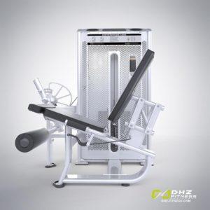 DHZ Fitness Prestige Pro E7002A Разгибание ног фото