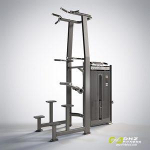 DHZ Fitness Prestige Pro E7009A Турник / брусья с противовесом фото
