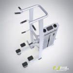 DHZ Fitness Prestige Pro E7009A Турник / брусья с противовесом