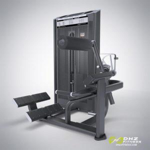 DHZ Fitness Prestige Pro E7031A Разгибание спины фото