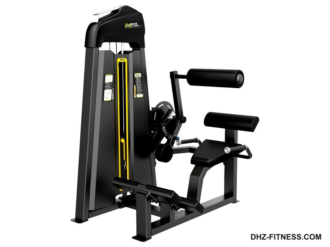 DHZ Fitness Evost Light E3000 E3031 Разгибание спины