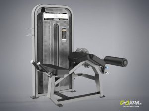 DHZ Fitness Fusion E5001 Сгибание ног лежа фото