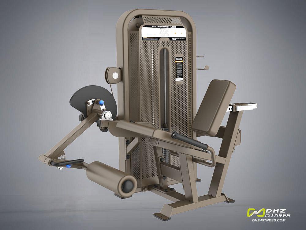 DHZ Fitness Fusion E5000 E5002 Разгибание ног