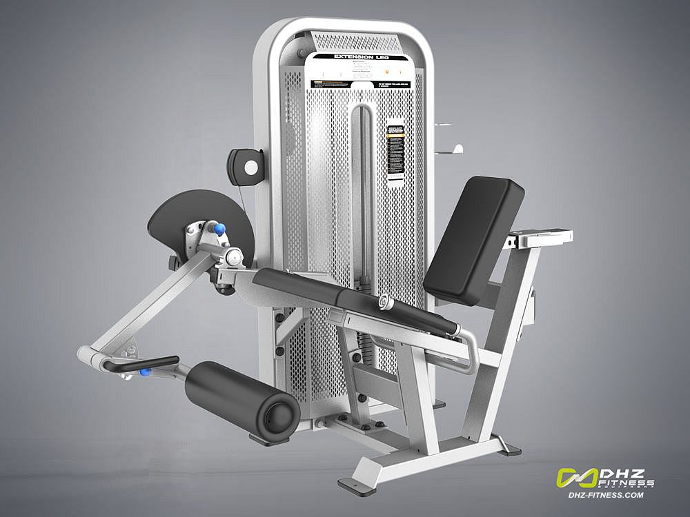 DHZ E-5002 Разгибание ног сидя (Leg Extension)