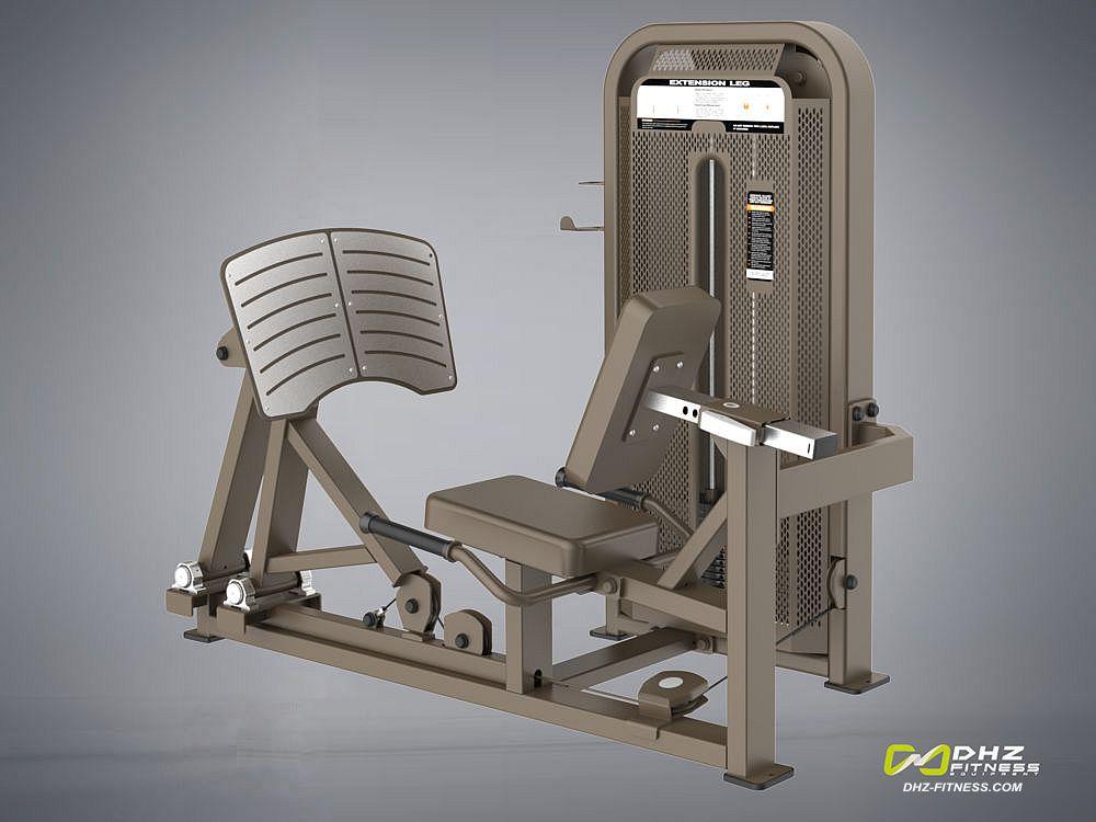 DHZ Fitness Fusion E5000 E5003 Жим ногами