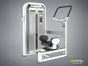 DHZ Fitness Fusion E5000 E5018 Торс-машина фото