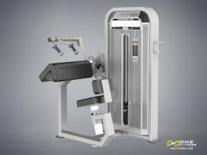 DHZ Fitness Fusion E5000 E5028 Трицепс-машина фото