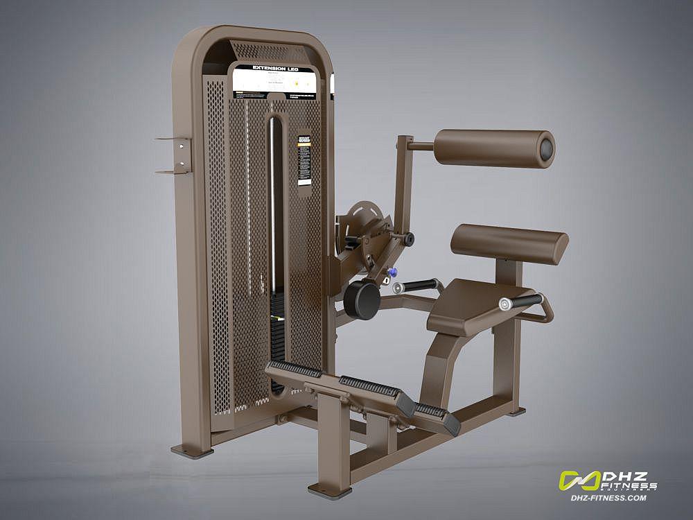 DHZ Fitness Fusion E5000 E5031 Разгибание спины