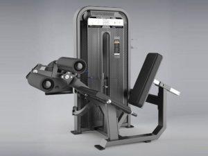 DHZ Fitness Fusion E5000 E5086 Сгибание / разгибание ног сидя фото