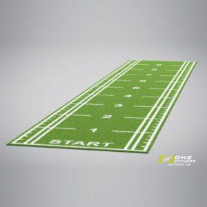 DHZ Искусственный газон для функционального тренинга с разметкой 2x10 фото