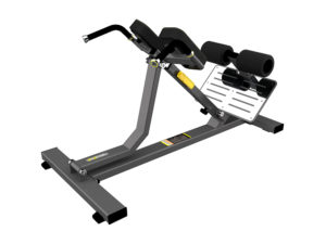 DHZ Fitness Evost Strong R-2045 Тренажер для разгибания спины. Гиперэкстензия (Back Extension) фото